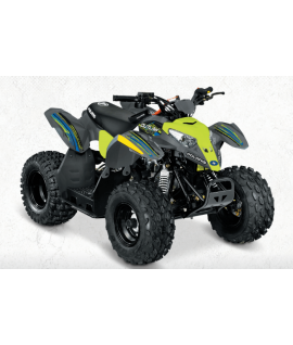 Quad Polaris Outlaw 50